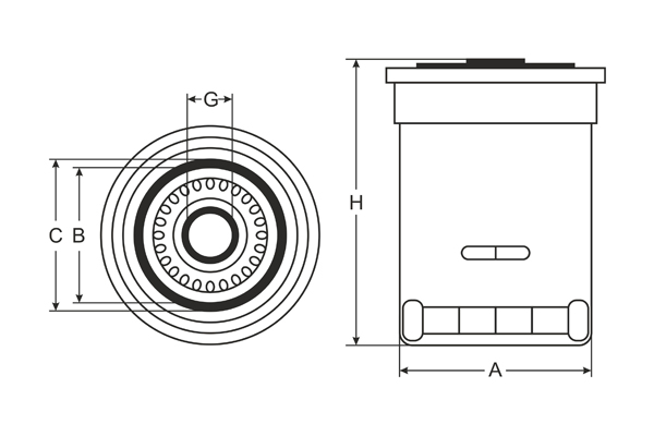 sk 809 oil filter sct